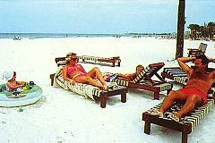 PrivateBeach Lounges