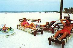 PrivateBeach Lounges