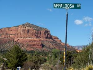 Appaloosa Welcome