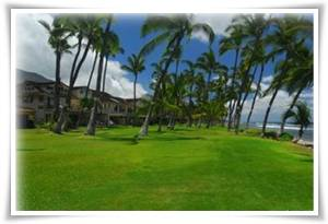 Kapalua, Hawaii Golf Vacation Rentals