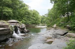 New York Catskills Hudson Valley Pet Friendly Rentals