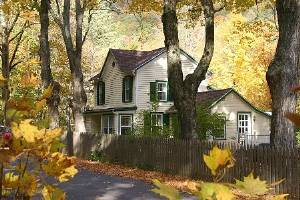 Fall foliage home