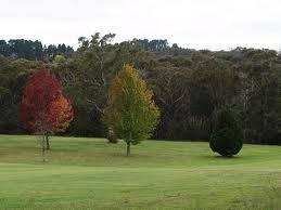 Leura Golf Course