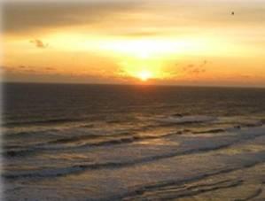 Little Gasparilla Island, Florida Beach Rentals