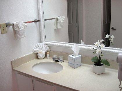 Bathroom with 2 Sepa