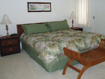 Master bdrm/king bed
