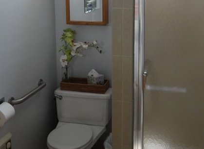 Easy Access Bathroom
