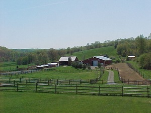 Pet Friendly 2435 Mount Airy Maryland Mount Airy Villa