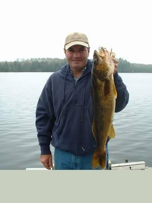 26.5 inch walleye