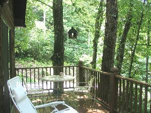 Treehouse Deck