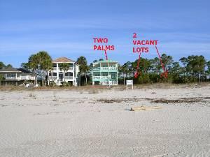 Beach View of 2 Palm