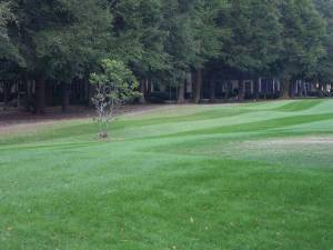 Fairway outside unit