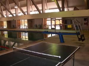 Ping pong @ pool