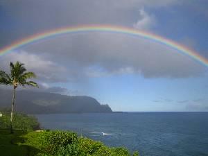 PKK view- Rainbow