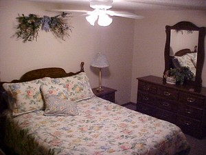 Lower level bedroom