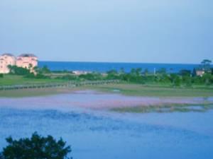 Ocean and Marsh View