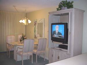 Dining Area / TV
