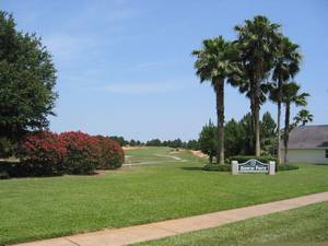 Golf Course setting