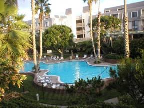 Lagoon-Style Pool