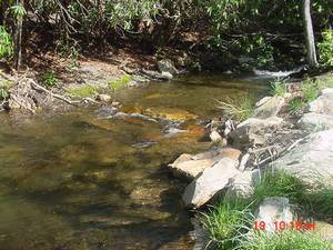 LARGE RUNNING CREEK