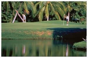 7 Golf Courses