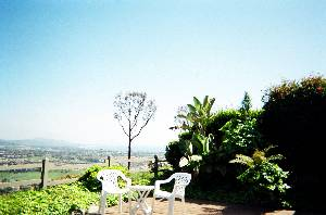 alternate view
