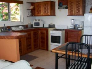 1 bdr. kitchen
