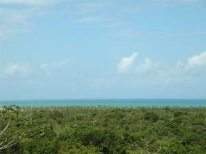 Overview ocean