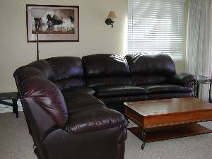 Leather Sleeper sofa