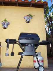 Shared BBQ Grill