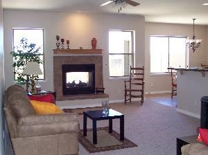 Fireplace Lv/Rm