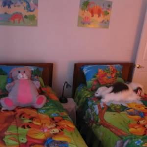 kids room-2 twins